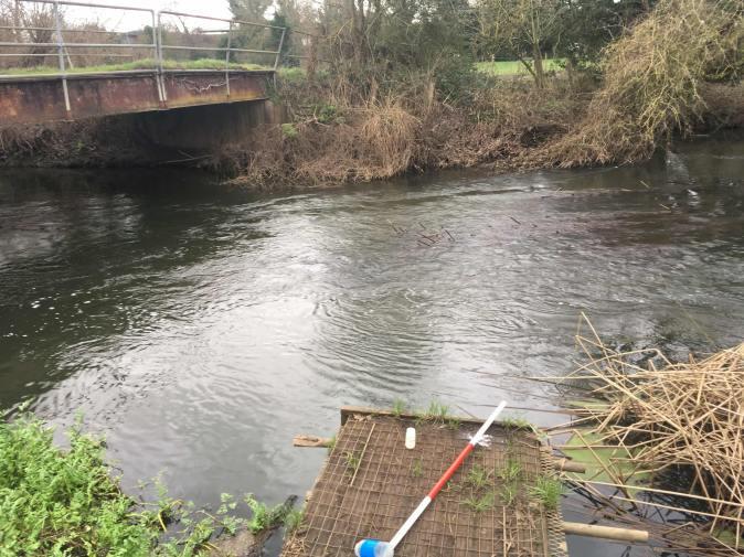 sampling-river-loddon